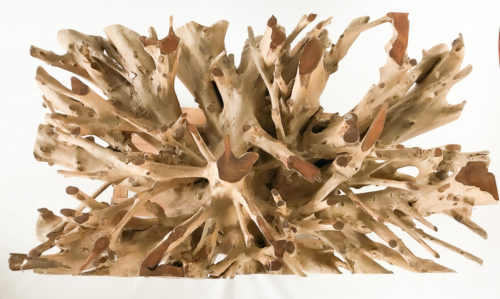 Mesa comedor raíz de teca