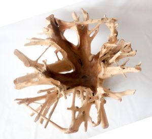 Mesa de raíz de teca redonda