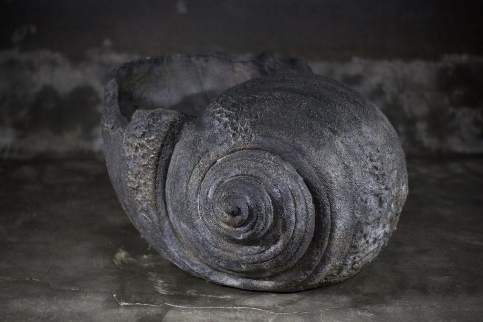 Concha gigante decorativa
