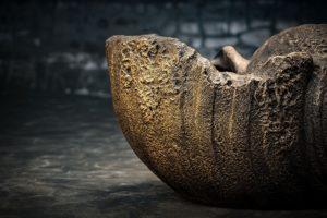 Macetero concha de cemento Mi Rococo de 70cm